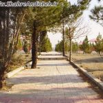 photo_2015-11-05_00-10-16.jpg