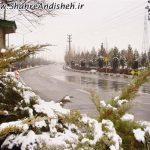 photo_2021-04-22_04-26-04.jpg