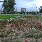 photo_2015-11-05_00-18-18.jpg